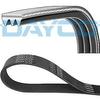 dayco-v-kayisi-3pk755