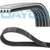 dayco-v-kayisi-5pk968